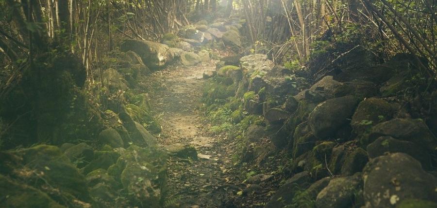Trekking Monte Arci